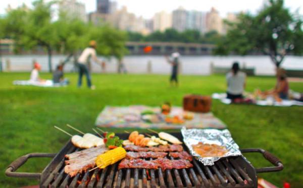 piknik.jpeg